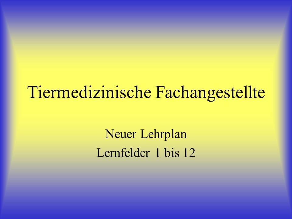 Tiermedizinische Fachangestellte Neuer Lehrplan Lernfelder 1 bis 12
