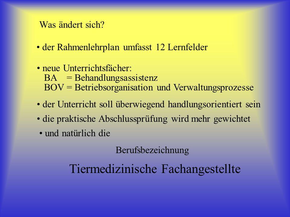 Die Lernfelder 1.