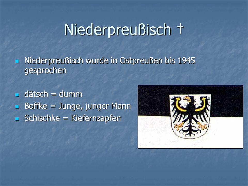 Niederpreußisch Niederpreußisch wurde in Ostpreußen bis 1945 gesprochen dätsch = dumm Boffke = Junge, junger Mann Schischke = Kiefernzapfen