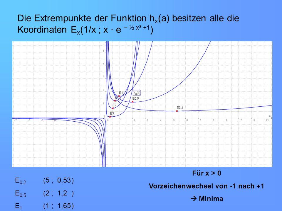 Die Extrempunkte der Funktion h x (a) besitzen alle die Koordinaten E x (1/x ; x · e – ½ x² +1 ) Für x > 0 Vorzeichenwechsel von -1 nach +1 Minima E 0