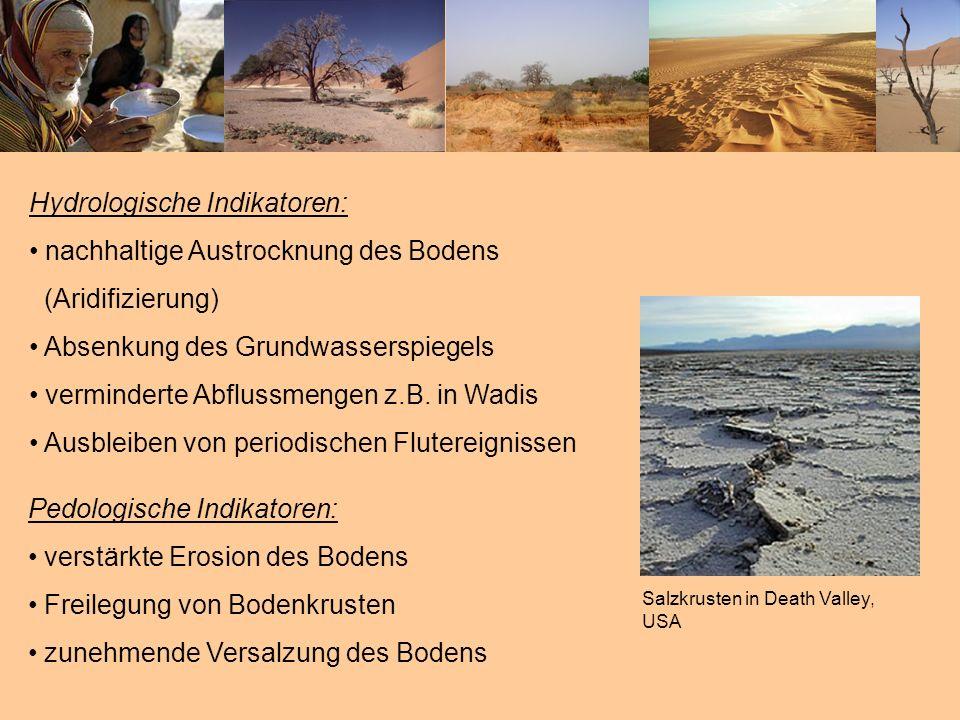 Hydrologische Indikatoren: nachhaltige Austrocknung des Bodens (Aridifizierung) Absenkung des Grundwasserspiegels verminderte Abflussmengen z.B. in Wa