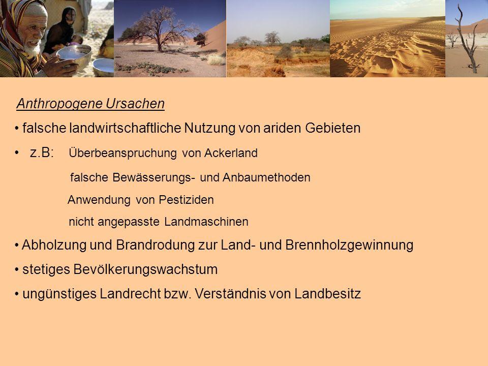 Anthropogene Ursachen falsche landwirtschaftliche Nutzung von ariden Gebieten z.B: Überbeanspruchung von Ackerland falsche Bewässerungs- und Anbaumeth