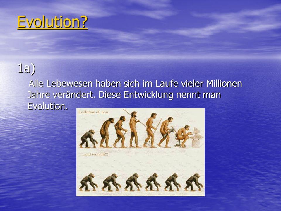 Evolution? 1a) Alle Lebewesen haben sich im Laufe vieler Millionen Jahre verändert. Diese Entwicklung nennt man Evolution. Alle Lebewesen haben sich i