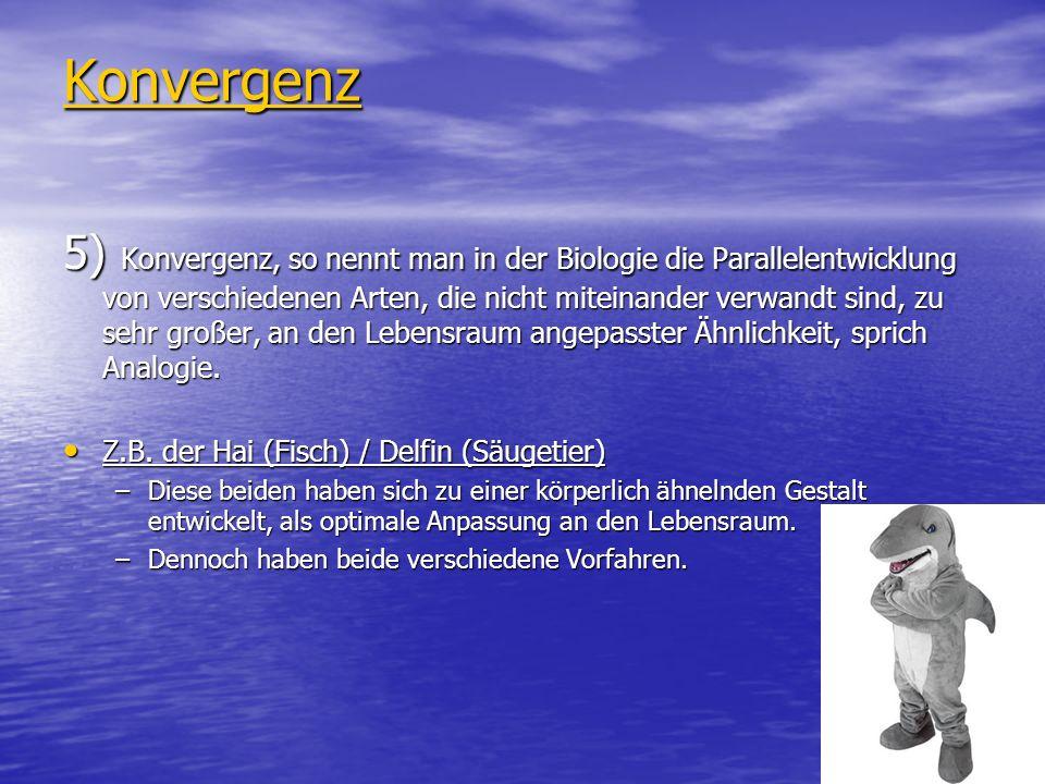 Konvergenz 5) Konvergenz, so nennt man in der Biologie die Parallelentwicklung von verschiedenen Arten, die nicht miteinander verwandt sind, zu sehr g