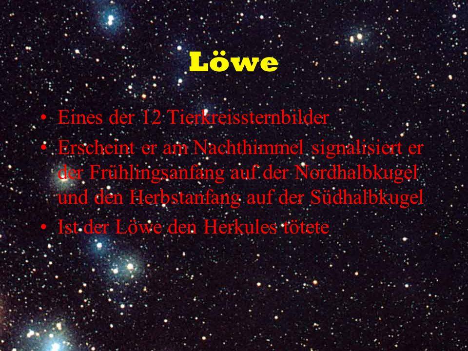 Löwe Eines der 12 Tierkreissternbilder Erscheint er am Nachthimmel signalisiert er der Frühlingsanfang auf der Nordhalbkugel und den Herbstanfang auf