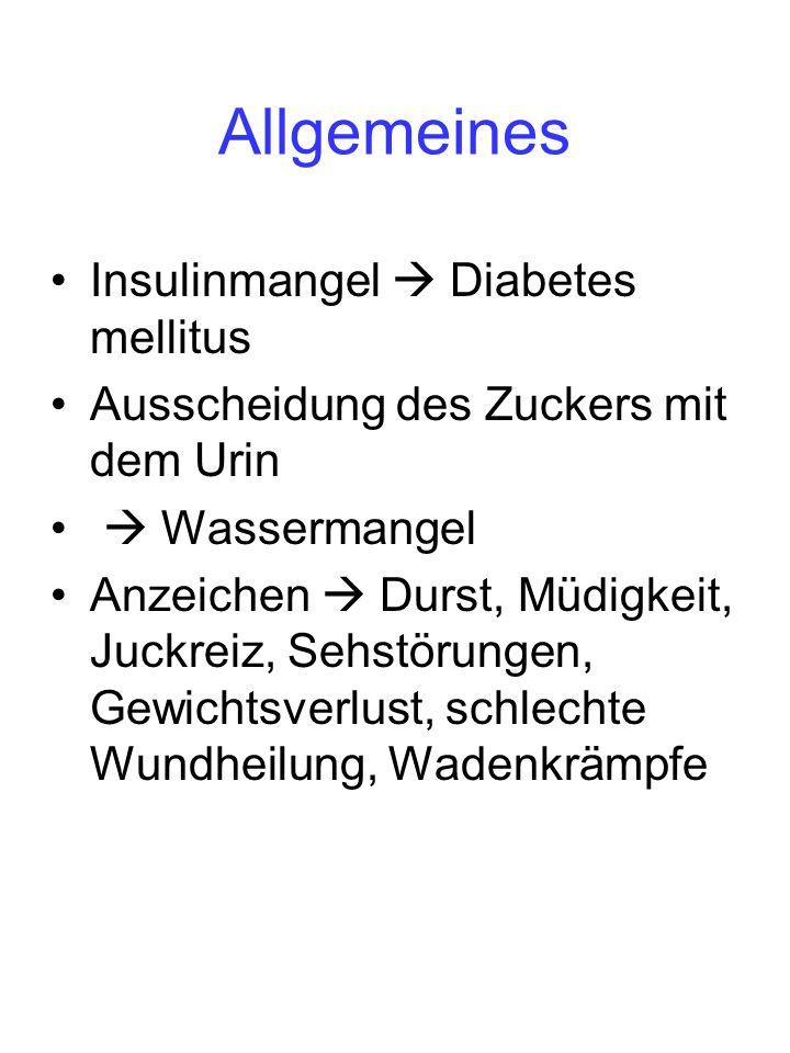 Allgemeines Insulinmangel Diabetes mellitus Ausscheidung des Zuckers mit dem Urin Wassermangel Anzeichen Durst, Müdigkeit, Juckreiz, Sehstörungen, Gew