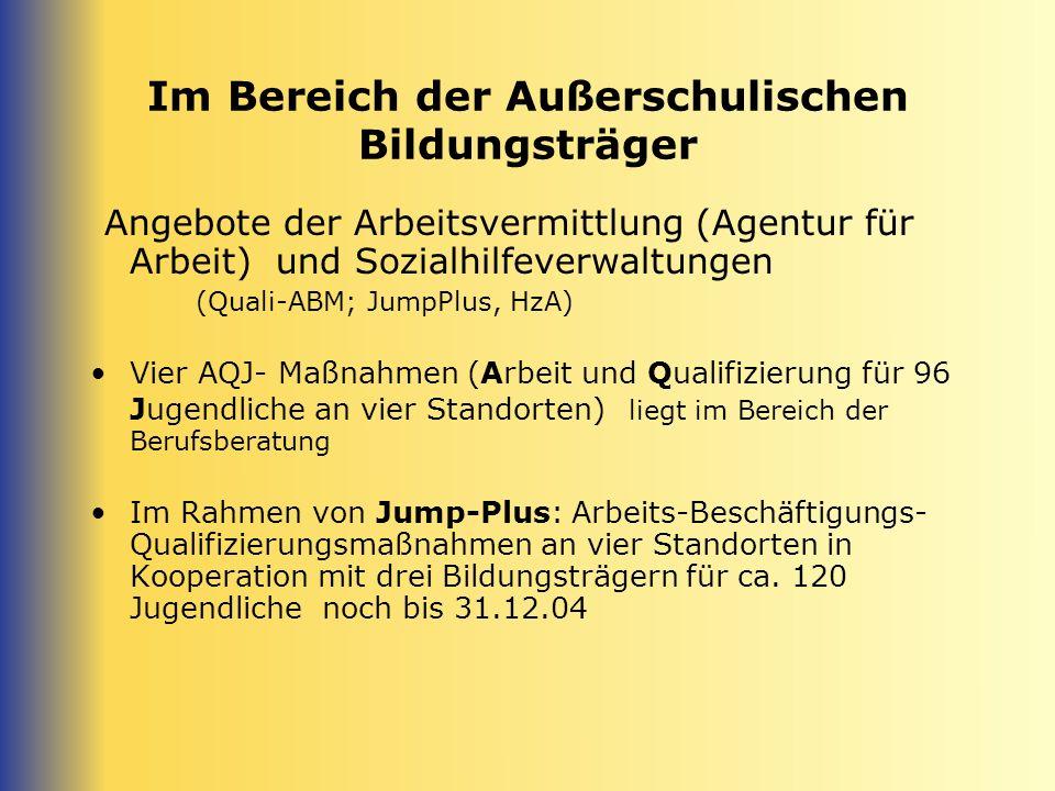 Im Bereich der Außerschulischen Bildungsträger Angebote der Arbeitsvermittlung (Agentur für Arbeit) und Sozialhilfeverwaltungen (Quali-ABM; JumpPlus,
