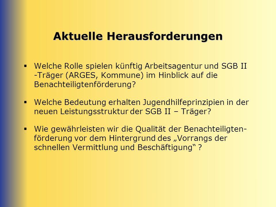Aktuelle Herausforderungen Welche Rolle spielen künftig Arbeitsagentur und SGB II -Träger (ARGES, Kommune) im Hinblick auf die Benachteiligtenförderung.