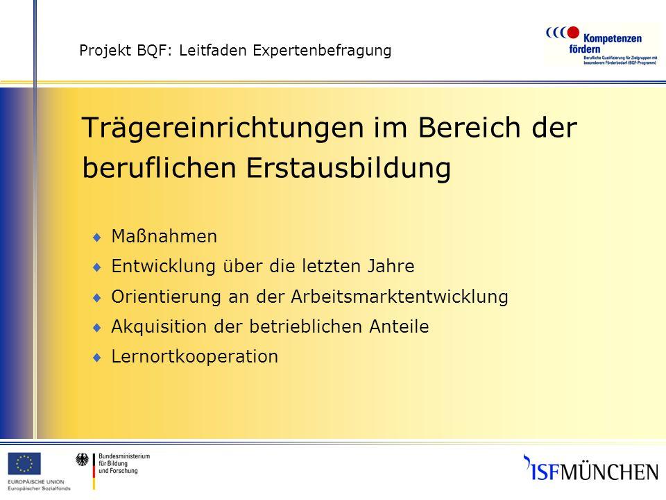 Projekt BQF: Leitfaden Expertenbefragung Trägereinrichtungen im Bereich der beruflichen Erstausbildung Maßnahmen Entwicklung über die letzten Jahre Or