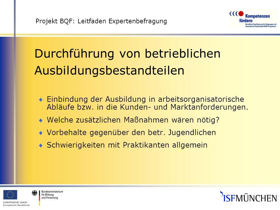Projekt BQF: Leitfaden Expertenbefragung Durchführung von betrieblichen Ausbildungsbestandteilen Einbindung der Ausbildung in arbeitsorganisatorische