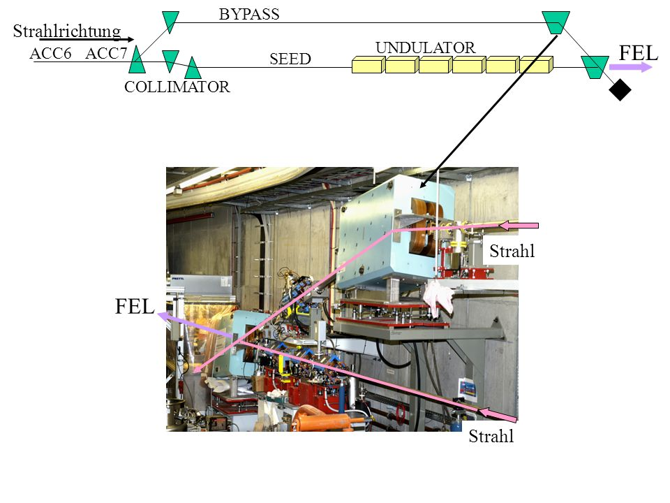 Strahlrichtung ACC6 BYPASS UNDULATOR COLLIMATOR ACC7 SEED FEL Strahl FEL