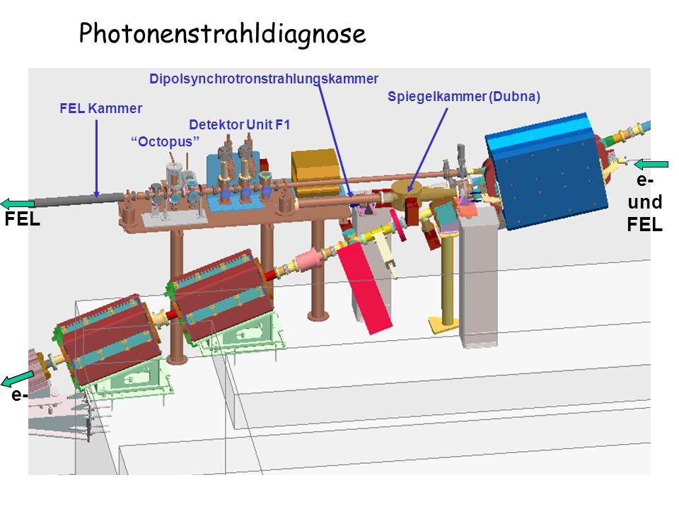 FEL Kammer Dipolsynchrotronstrahlungskammer Spiegelkammer (Dubna) Octopus Detektor Unit F1 e- und FEL e- FEL Photonenstrahldiagnose