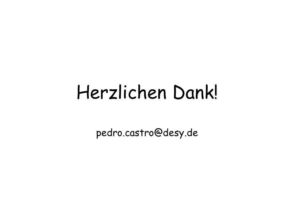 Herzlichen Dank! pedro.castro@desy.de