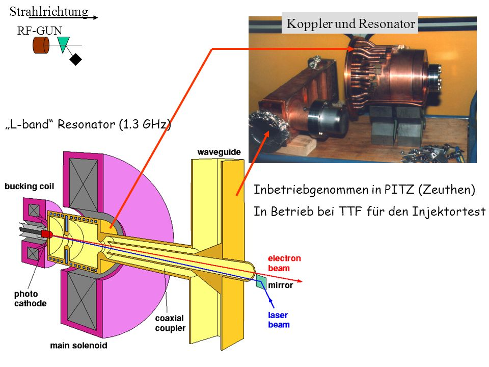 Strahlrichtung ACC6 BYPASS UNDULATOR COLLIMATOR ACC7 SEED Strahl FEL Undulator