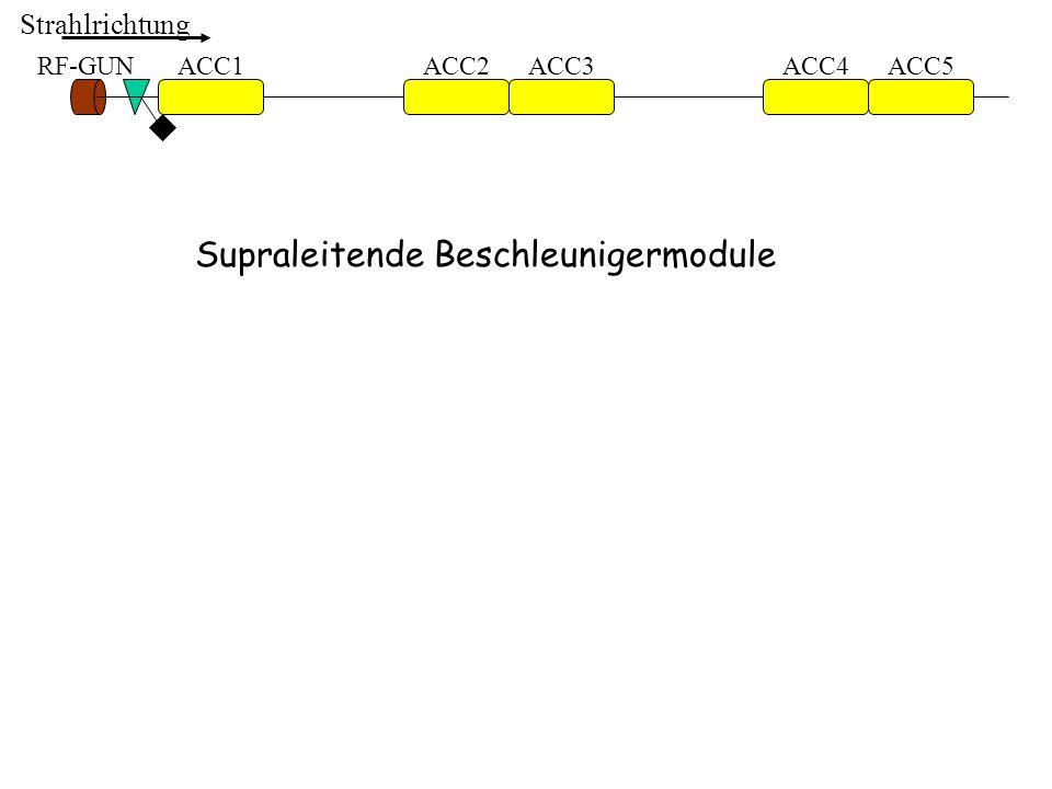 ACC1ACC2ACC3ACC4ACC5RF-GUN Strahlrichtung Supraleitende Beschleunigermodule