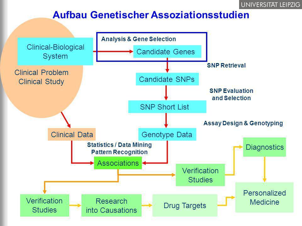 15/37 Clinical Data Aufbau Genetischer Assoziationsstudien Statistics / Data Mining Pattern Recognition Associations Research into Causations Drug Tar