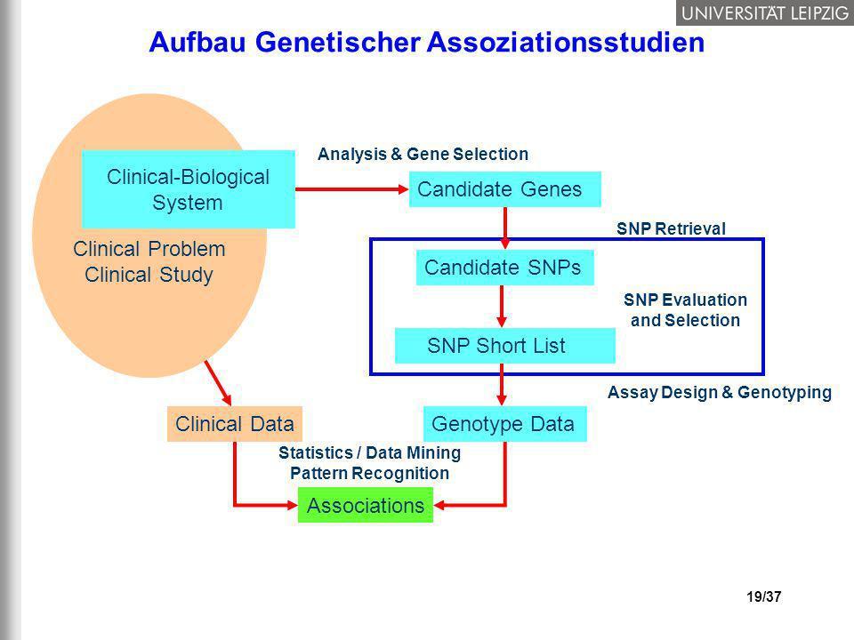 19/37 Aufbau Genetischer Assoziationsstudien Clinical Data Statistics / Data Mining Pattern Recognition Associations Clinical Problem Clinical Study C