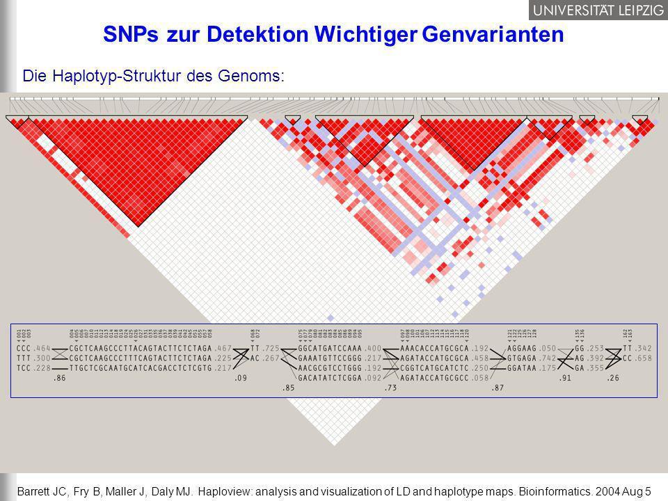 21/37 Barrett JC, Fry B, Maller J, Daly MJ. Haploview: analysis and visualization of LD and haplotype maps. Bioinformatics. 2004 Aug 5 SNPs zur Detekt
