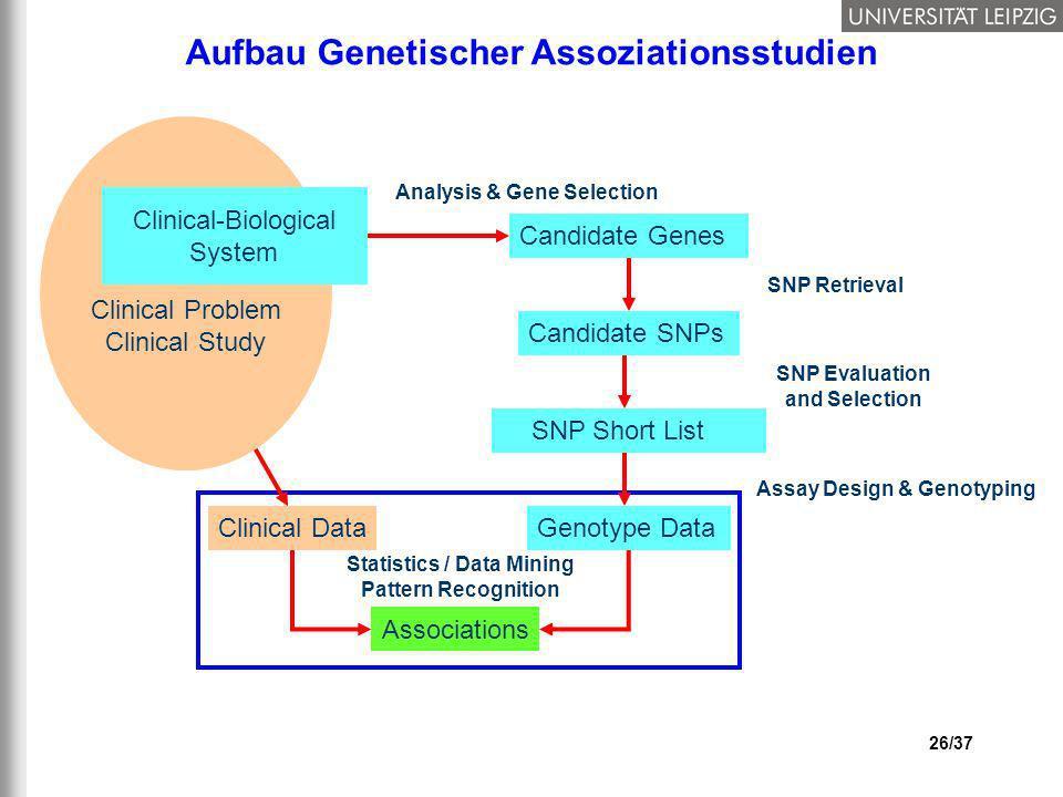 26/37 Aufbau Genetischer Assoziationsstudien Clinical Data Statistics / Data Mining Pattern Recognition Associations Clinical Problem Clinical Study C