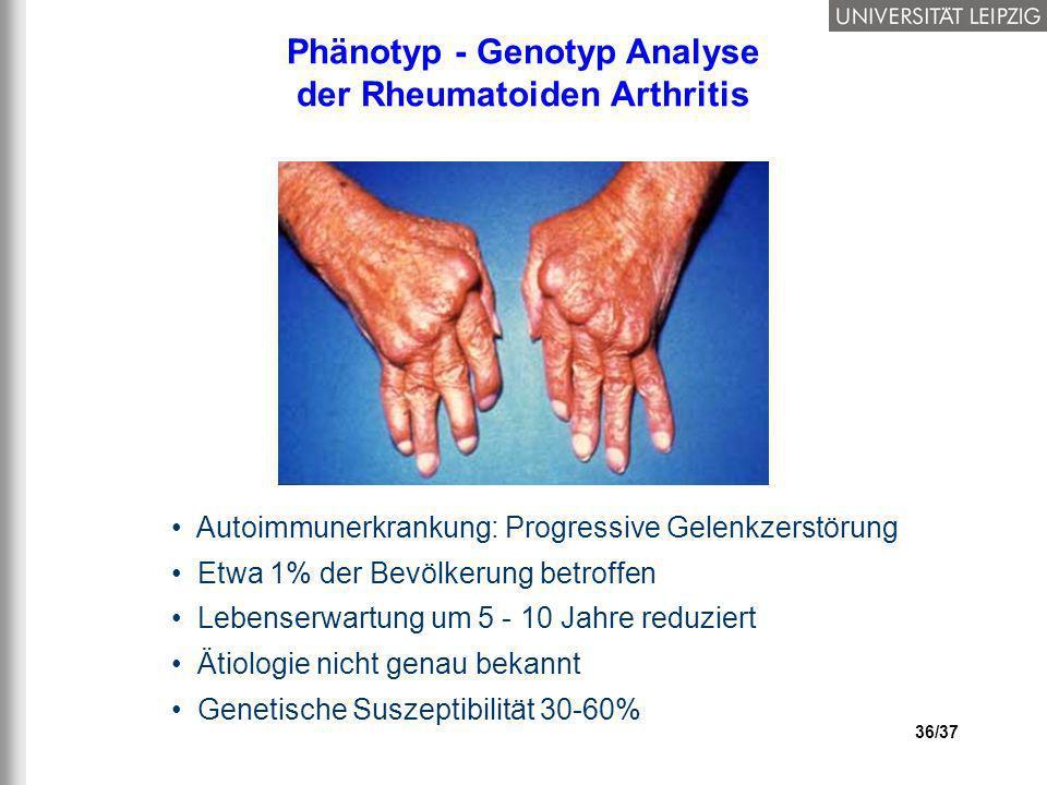 36/37 Phänotyp - Genotyp Analyse der Rheumatoiden Arthritis Autoimmunerkrankung: Progressive Gelenkzerstörung Etwa 1% der Bevölkerung betroffen Lebens