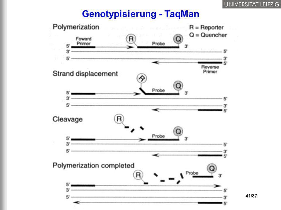 41/37 Genotypisierung - TaqMan