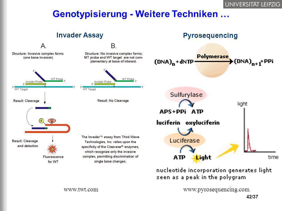 42/37 Genotypisierung - Weitere Techniken … Invader Assay Pyrosequencing www.pyrosequencing.comwww.twt.com
