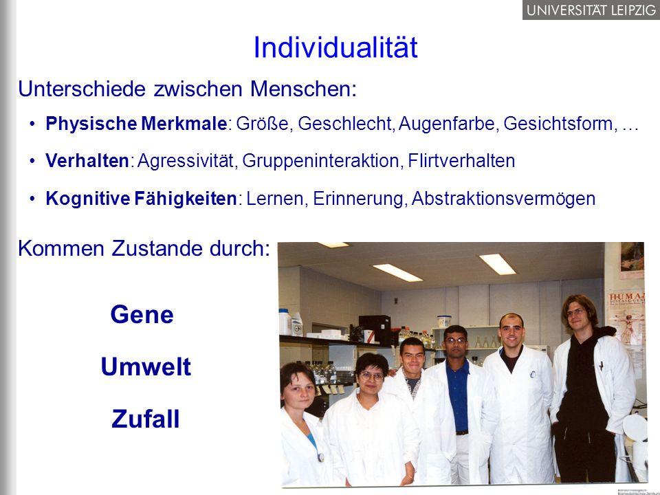 Individualität Unterschiede zwischen Menschen: Physische Merkmale: Größe, Geschlecht, Augenfarbe, Gesichtsform, … Verhalten: Agressivität, Gruppeninte