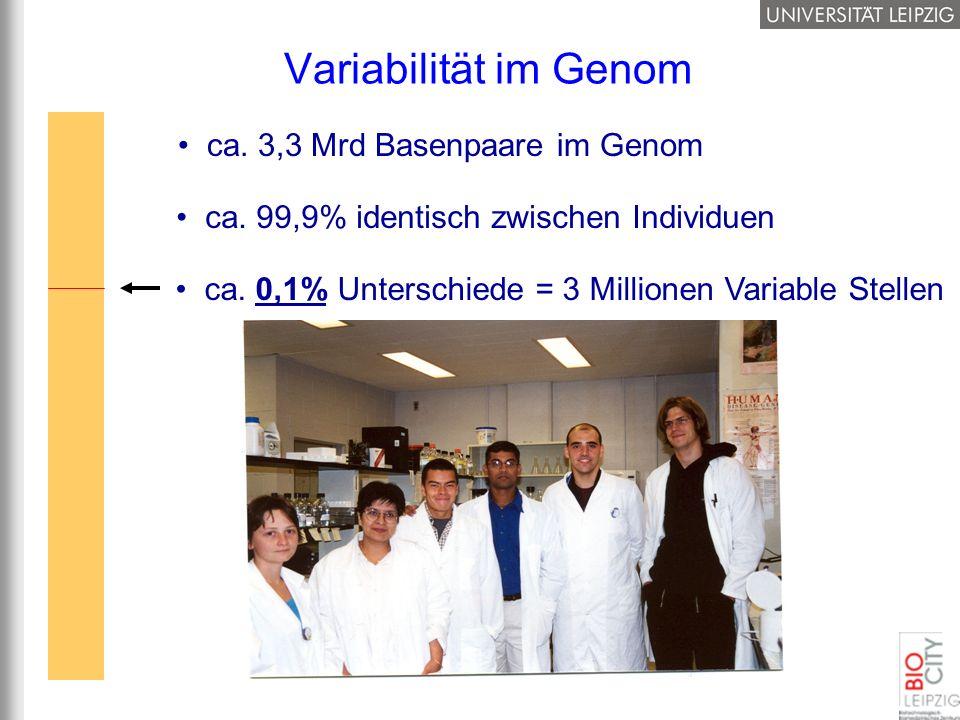 ca. 3,3 Mrd Basenpaare im Genom Variabilität im Genom ca. 99,9% identisch zwischen Individuen ca. 0,1% Unterschiede = 3 Millionen Variable Stellen