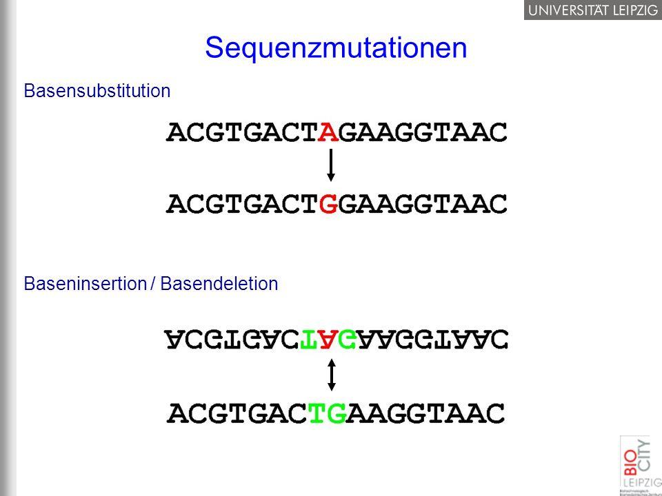 Basensubstitution Baseninsertion / Basendeletion Sequenzmutationen
