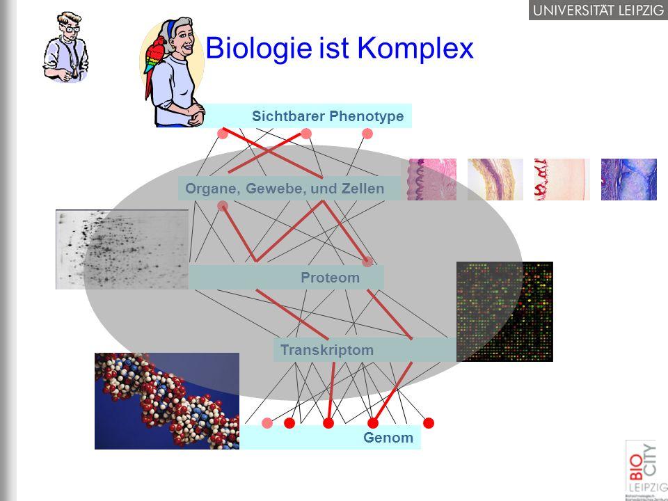 Sichtbarer Phenotype Organe, Gewebe, und Zellen Genom Transkriptom Proteom Biologie ist Komplex