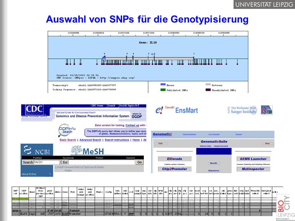 Auswahl von SNPs für die Genotypisierung