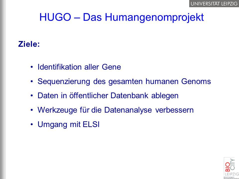 Ziele: Identifikation aller Gene Sequenzierung des gesamten humanen Genoms Daten in öffentlicher Datenbank ablegen Werkzeuge für die Datenanalyse verb