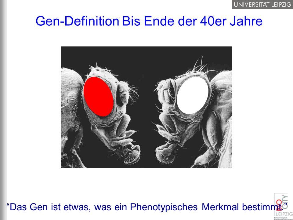 Gen-Definition Bis Ende der 40er Jahre Das Gen ist etwas, was ein Phenotypisches Merkmal bestimmt.