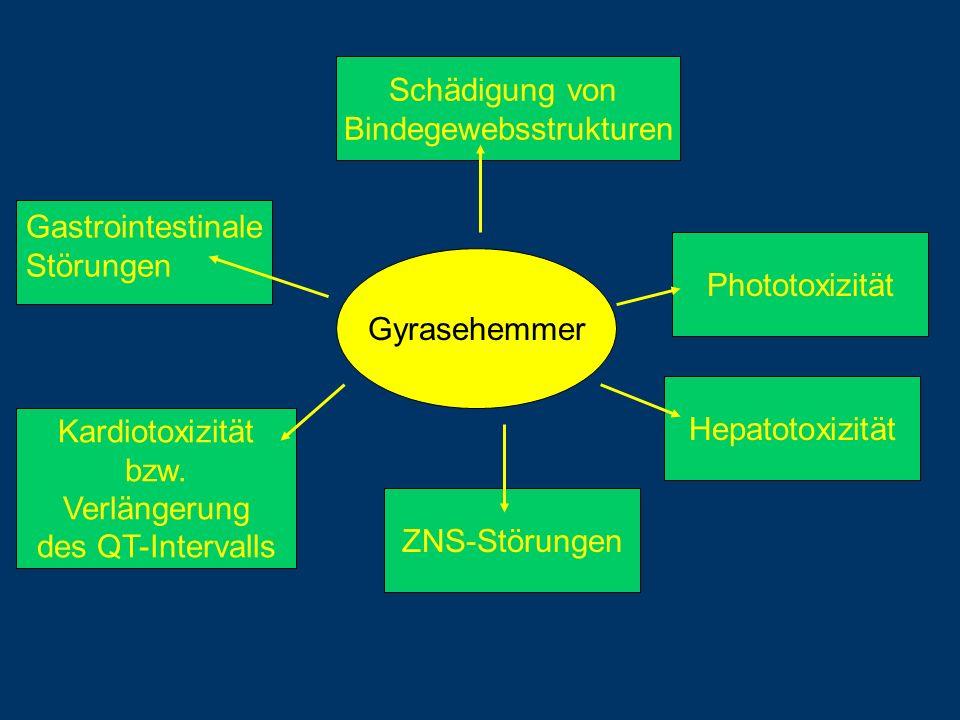 Gyrasehemmer Gastrointestinale Störungen Schädigung von Bindegewebsstrukturen Phototoxizität ZNS-Störungen Kardiotoxizität bzw. Verlängerung des QT-In