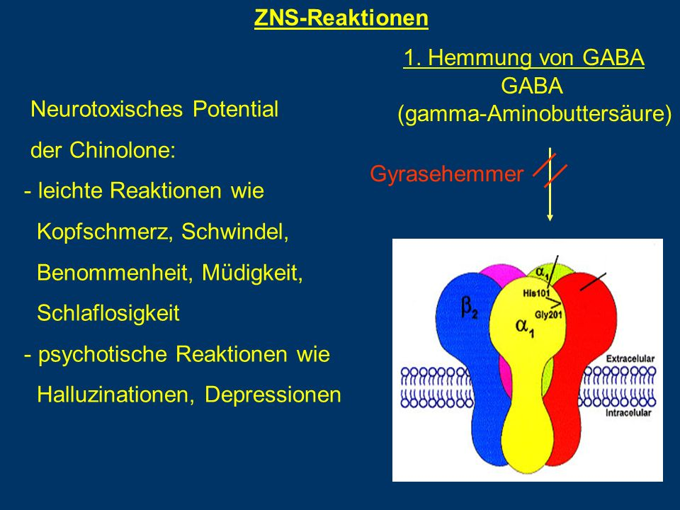 ZNS-Reaktionen Neurotoxisches Potential der Chinolone: - leichte Reaktionen wie Kopfschmerz, Schwindel, Benommenheit, Müdigkeit, Schlaflosigkeit - psychotische Reaktionen wie Halluzinationen, Depressionen GABA (gamma-Aminobuttersäure) Gyrasehemmer 1.