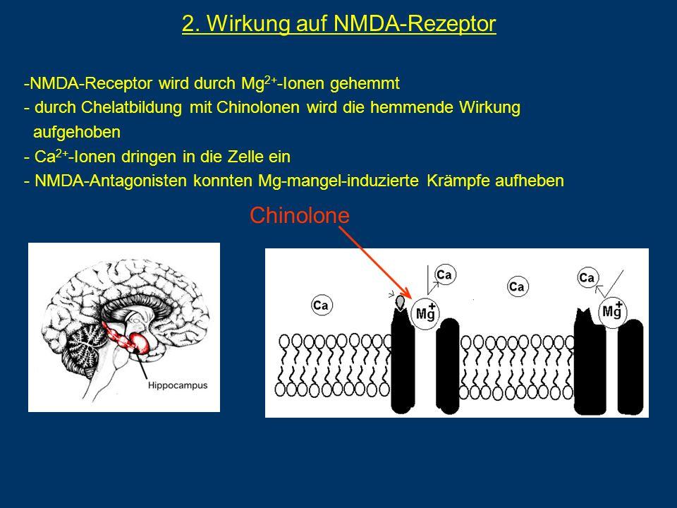 Chinolone 2. Wirkung auf NMDA-Rezeptor -NMDA-Receptor wird durch Mg 2+ -Ionen gehemmt - durch Chelatbildung mit Chinolonen wird die hemmende Wirkung a