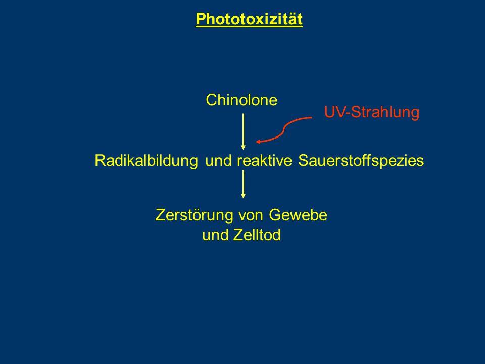 Phototoxizität Chinolone Radikalbildung und reaktive Sauerstoffspezies UV-Strahlung Zerstörung von Gewebe und Zelltod