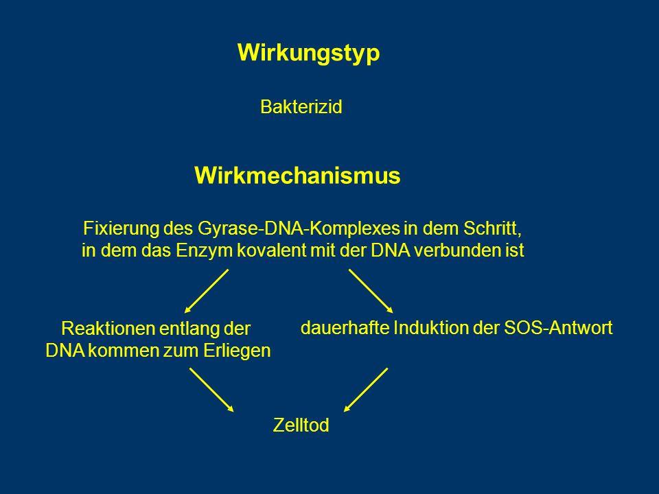 Wirkmechanismus Fixierung des Gyrase-DNA-Komplexes in dem Schritt, in dem das Enzym kovalent mit der DNA verbunden ist Reaktionen entlang der DNA kommen zum Erliegen dauerhafte Induktion der SOS-Antwort Zelltod Wirkungstyp Bakterizid