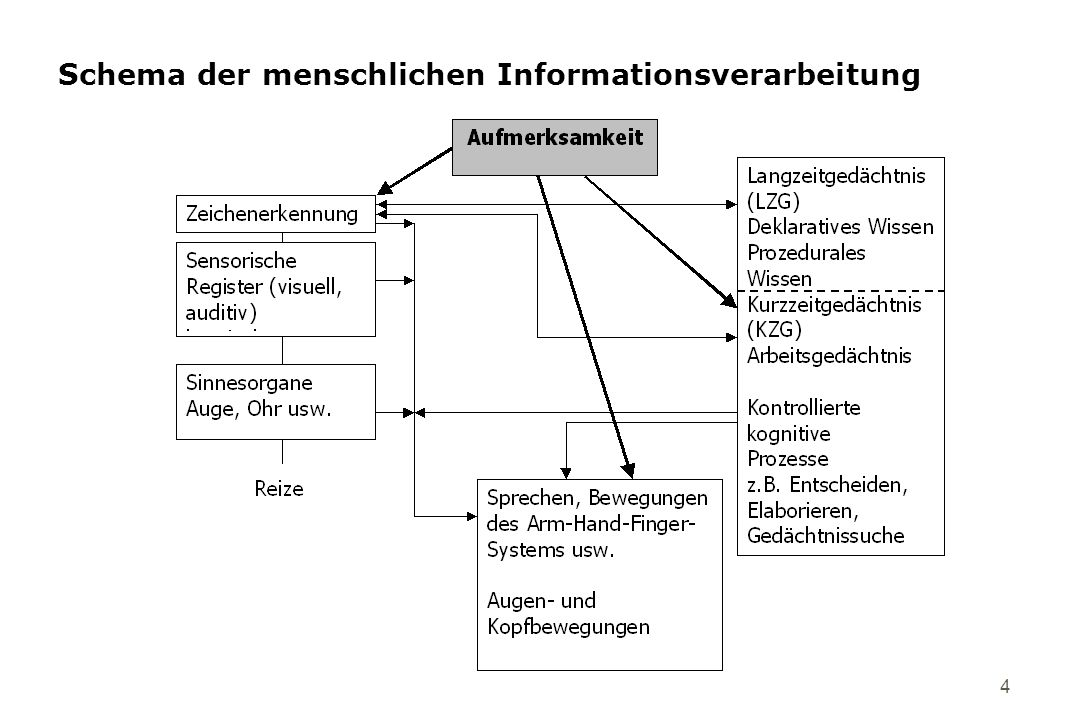 4 Schema der menschlichen Informationsverarbeitung