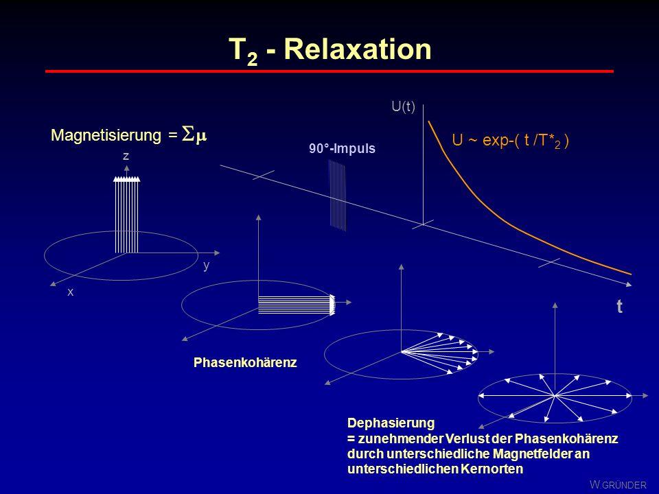 W. GRÜNDER Longitudinale (T 1 ) und transversale (T 2 ) Relaxation beide Prozesse laufen gleichteitig ab ! es gilt: T 2 < T 1 =