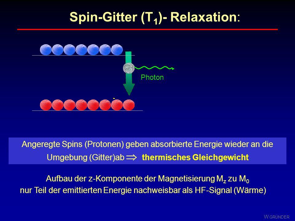 W. GRÜNDER M xy t T 2lang T 2kurz Unterschiedliche T 2 -Zeiten Jede Gewebeart hat eine charakteristischen T 2 -Wert Der Zerfall der Quermagnetisierung