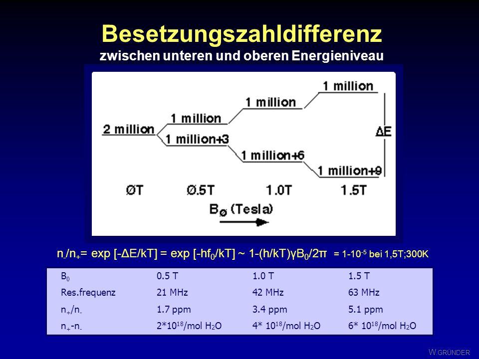 W. GRÜNDER Besetzungszahl-Verhältnis zwischen oberen und unteren Energieniveau = Boltzmann-Faktor n - / n + = exp -{ h/2π B 0 /( k T) } Wegen quantenm
