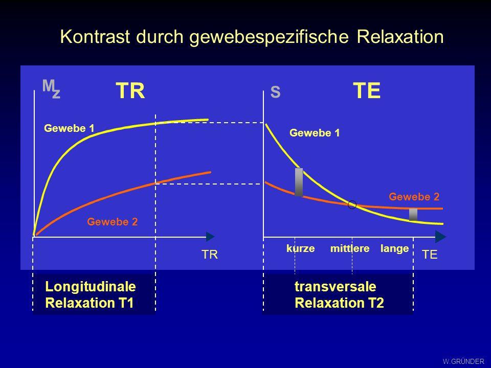 W.GRÜNDER Spin-Echo-Kontraste: die Echozeit TE 1 2 3 4
