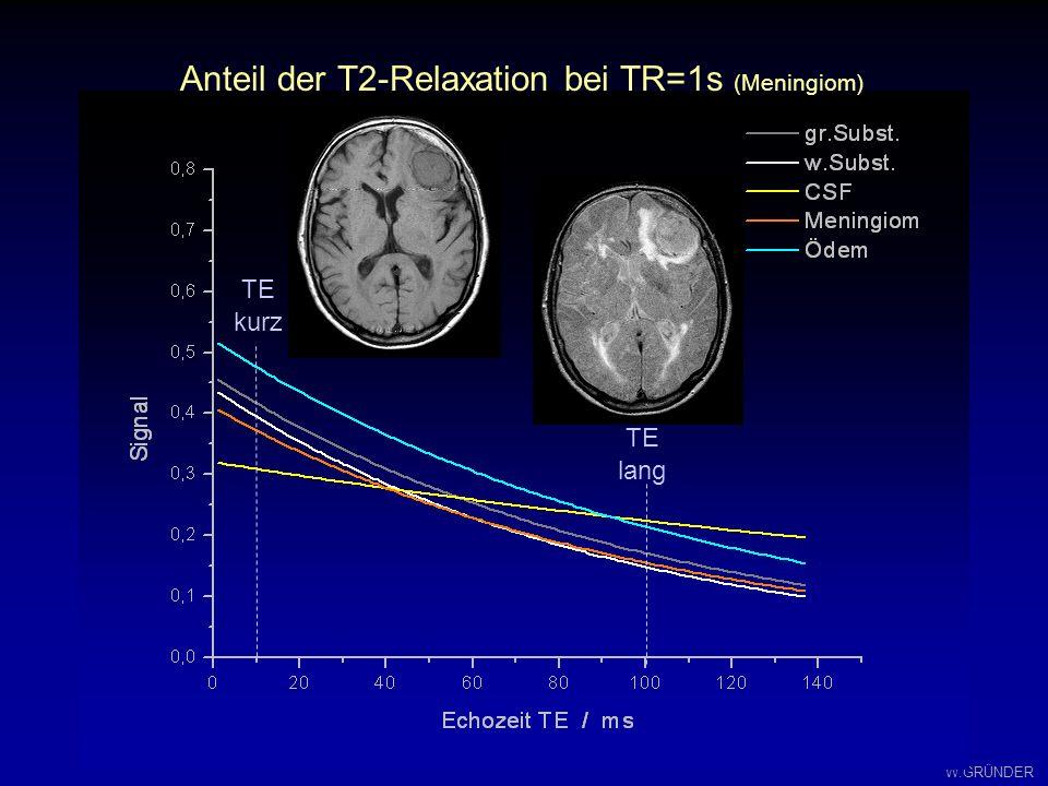 W.GRÜNDER TR / 10 ms Spin-Echo-Kontrast von Hirn-Gewebe TE / ms