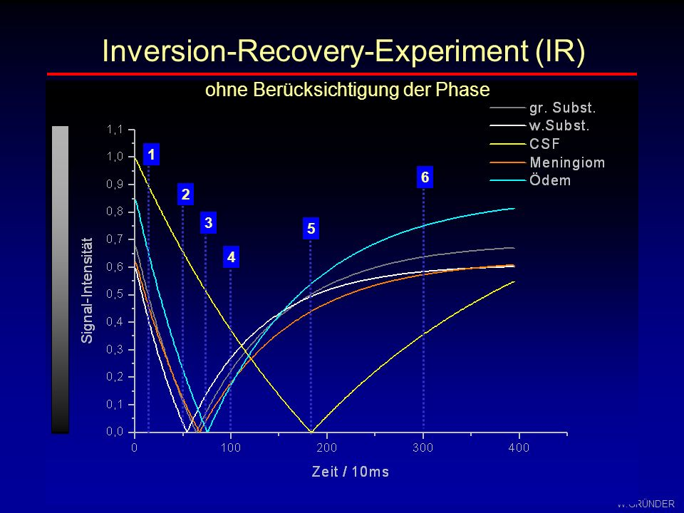 W.GRÜNDER TITE Inversion-Recovery-Experiment T2 TI - Kontrast