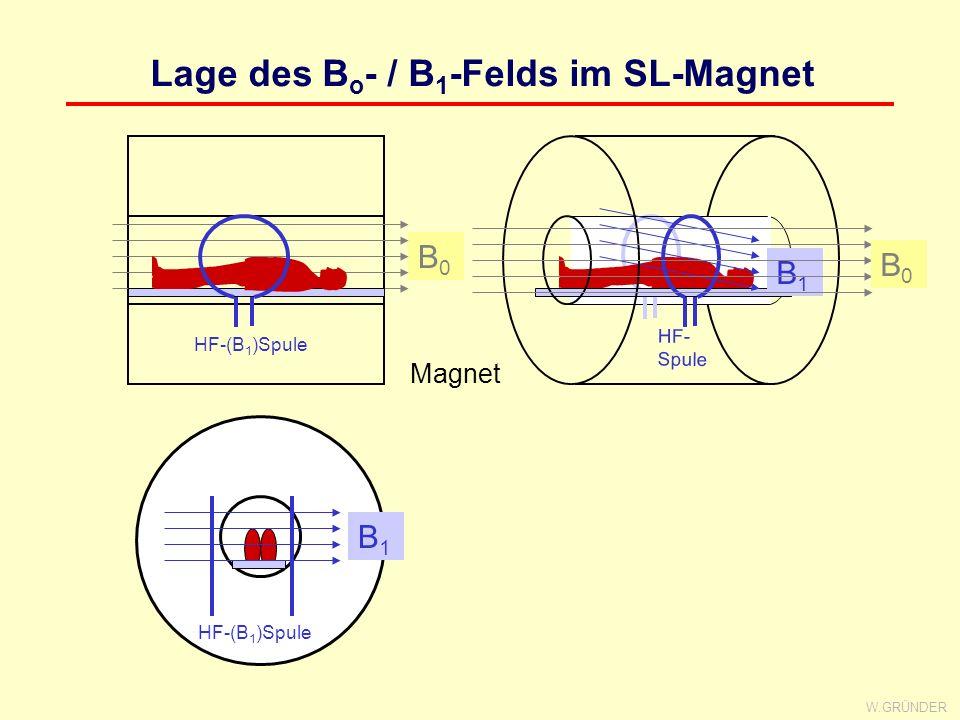 W.GRÜNDER Das Spin-Echo x y TE/2 x y x y π/2-Impuls π- Impuls Spin-Echo