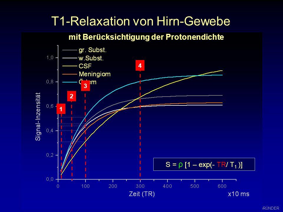 W.GRÜNDER Multi-Echo-Experiment (MSE) S = K * ρ * ( 1 – exp{ - TR/ T 1 }) * exp { -TE/T 2 } TR TE exp (-t/T 2 ) exp (-t/T 2 * ) Abfall der Echo-Einhül