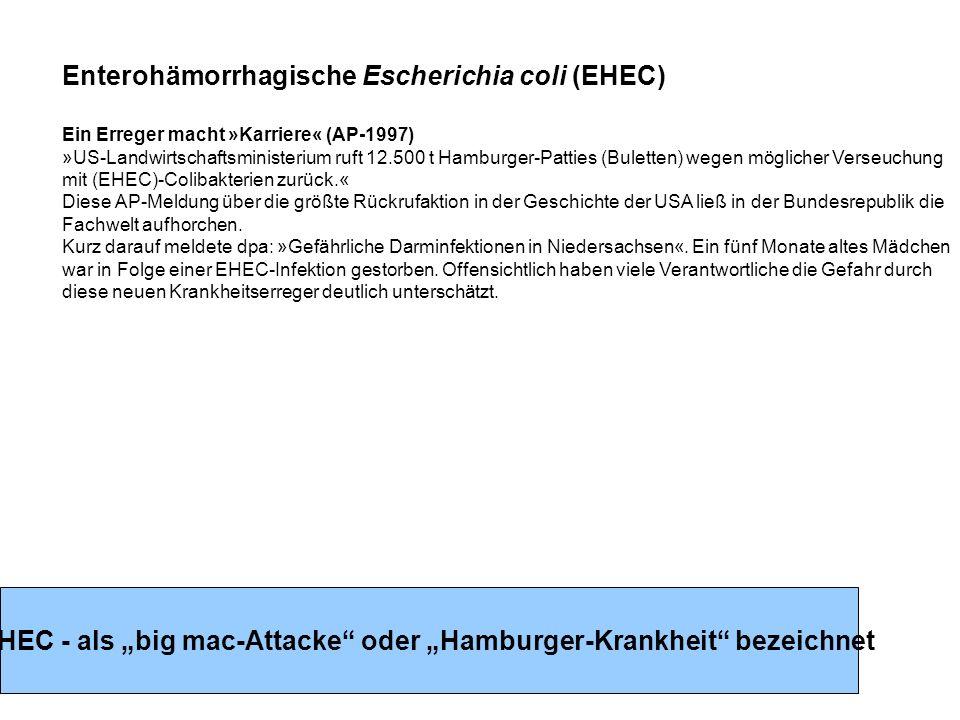 Enterohämorrhagische Escherichia coli (EHEC) Ein Erreger macht »Karriere« (AP-1997) »US-Landwirtschaftsministerium ruft 12.500 t Hamburger-Patties (Buletten) wegen möglicher Verseuchung mit (EHEC)-Colibakterien zurück.« Diese AP-Meldung über die größte Rückrufaktion in der Geschichte der USA ließ in der Bundesrepublik die Fachwelt aufhorchen.