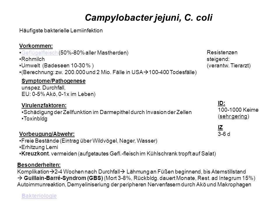 Campylobacter jejuni, C.
