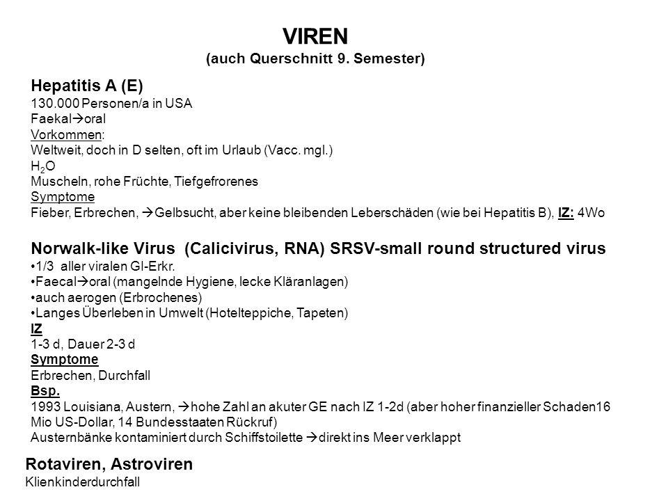 VIREN (auch Querschnitt 9.